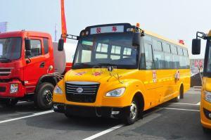 楚風51座小學生專用校車圖片