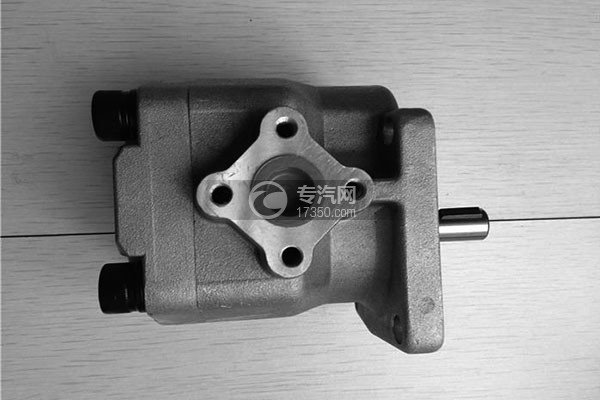 F310油泵