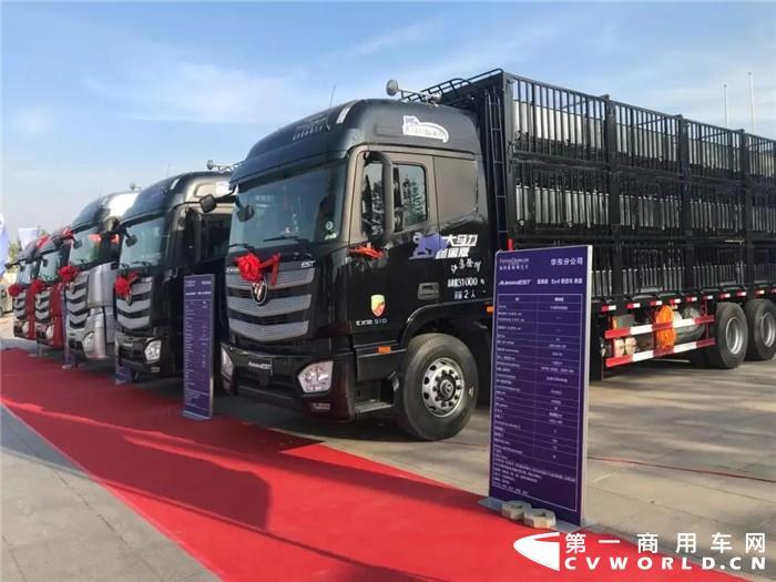 欧曼载货车510马力畜禽版产品登陆徐州 现场收获订单83辆