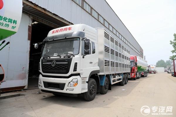 養殖專業戶的福利來啦——東風天龍前四后八畜禽運輸車