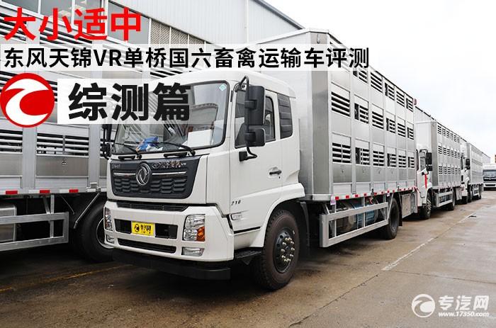 东风天锦VR单桥国六畜禽运输车评测