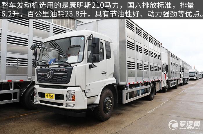 东风天锦VR单桥国六畜禽运输车评测发动机
