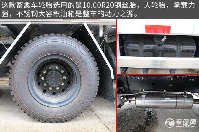 东风天锦VR单桥国六畜禽运输车评测轮胎