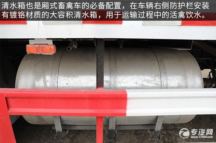 福田奥铃国六厢式畜禽运输车评测清水箱